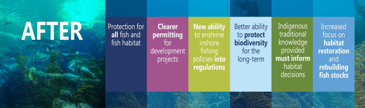 Introducing Canada S Modernized Fisheries Act