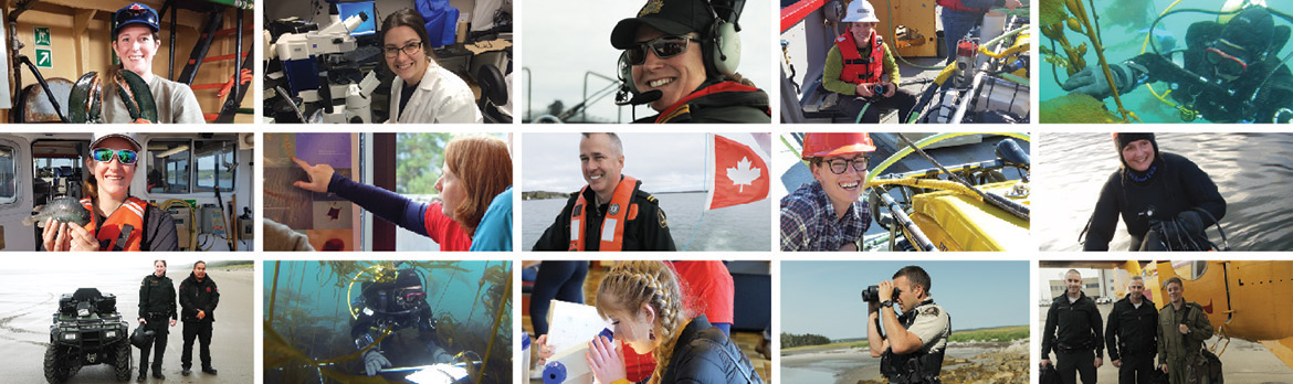Careers at Fisheries and Oceans Canada