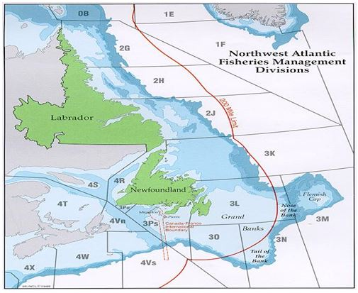 Map of Northwest atlantic fisheries management NAFO divisions