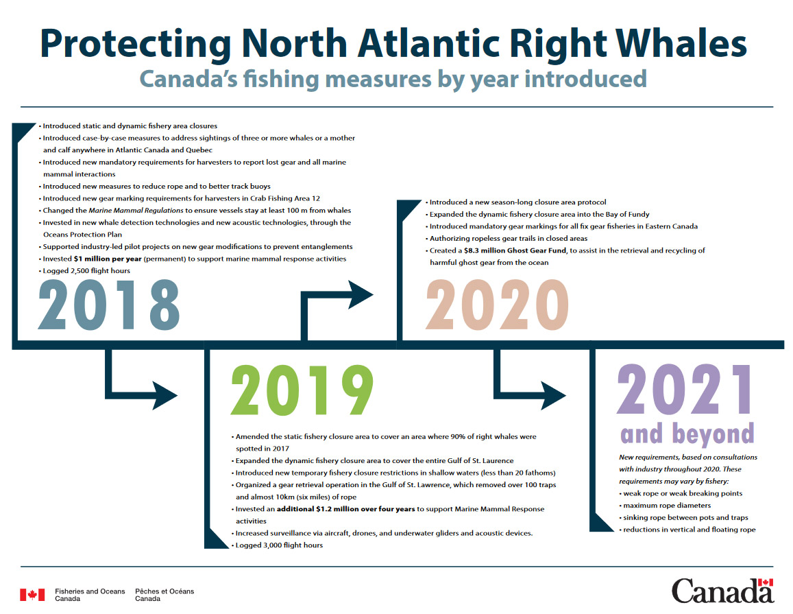 Protecting North Atlantic Right Whale