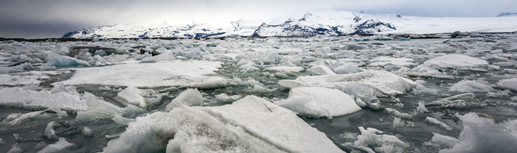Photo of ocean ice. Get information about the Ice Assistance Emergency Program