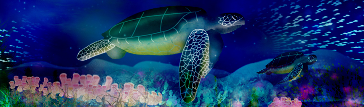 Leatherback turtles swim over corals