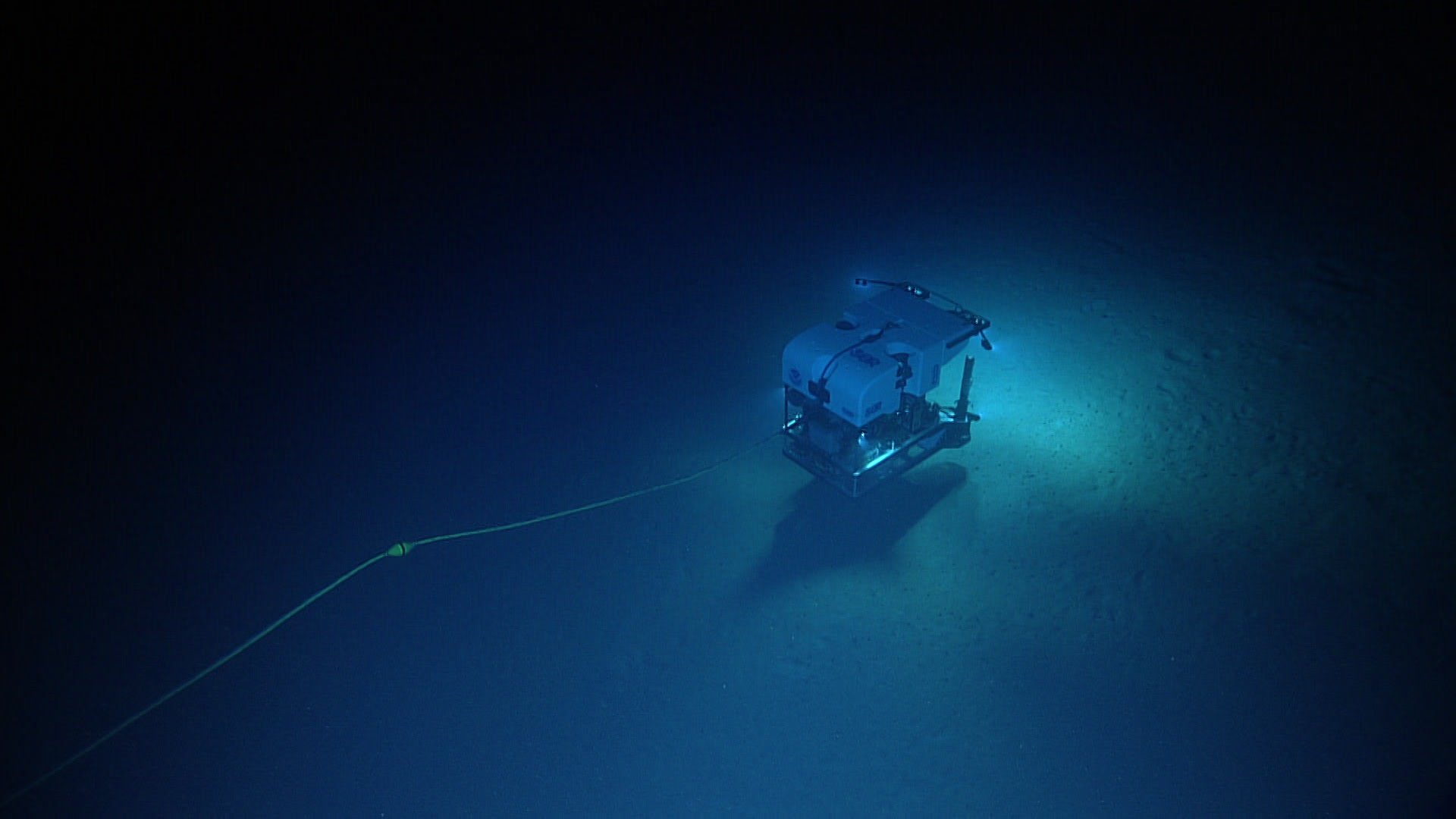 The Deep Discoverer Remotely Operated Vehicle (ROV) explores the Fundian Channel.