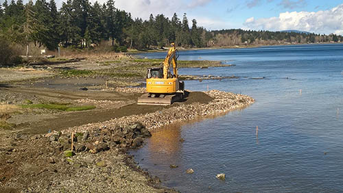 Construction of a salt marsh bench at Royston Wrecks, Royston BC. The site will be planted in year 2.