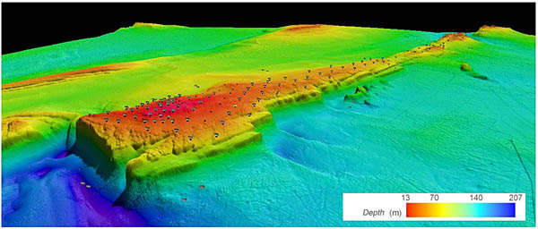 2012 three-dimensional representation of the ridge (middle section) of the American Bank and sampling stations using benthic imaging.