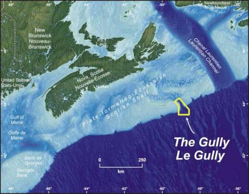 The Gully MPA