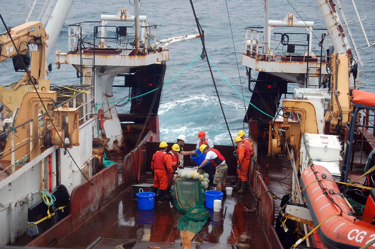 Ship pulling up a net from a Mesopelagic tow and checking the catch. Photo Credit: Hilary Moors-Murphy