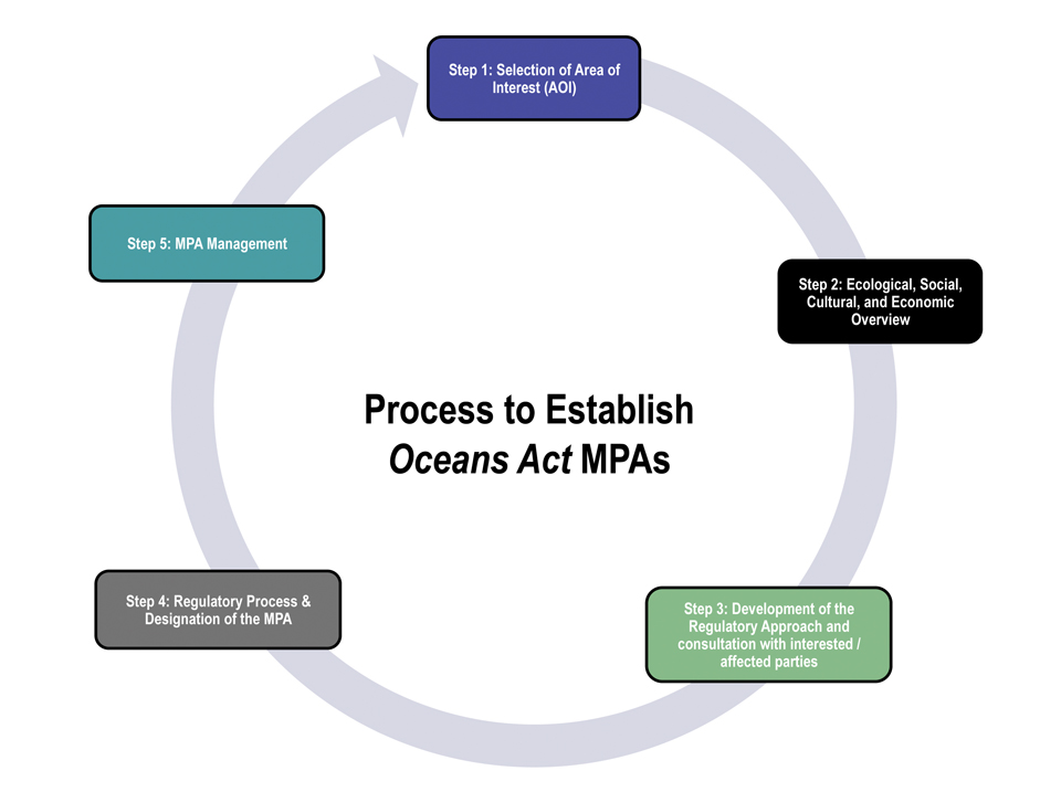 Figure 5: Process to Establish Oceans Act MPAs
