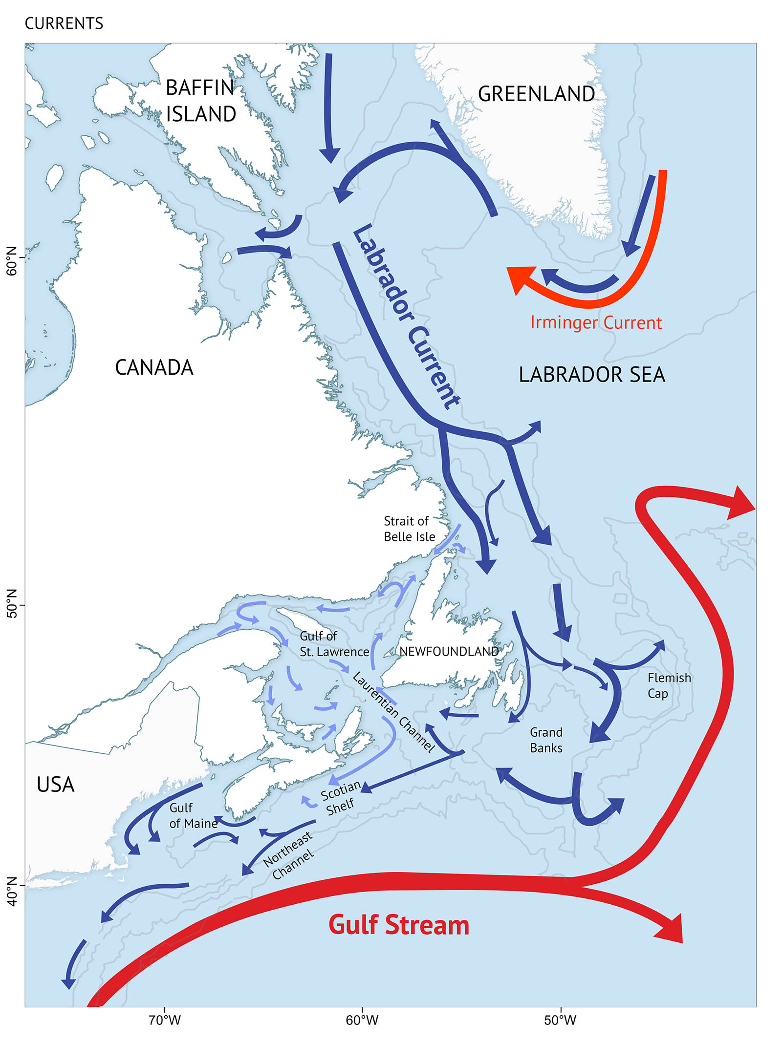 Figure 2: Currents of the Canadian Atlantic – Two main current systems influence the Canadian Atlantic – the cold Labrador Current from the north (darker blue), and the warm Gulf Stream from the south (dark red). A map of the Canadian Atlantic highlighting current systems in the water. A thick dark red line with an arrow at the end represents the Gulf Stream flowing north and east of North America. A dark blue line with an arrow at the end represents the Labrador Current flowing south from Baffin Island and Greenland. An orange current indicates Irminger Current which is shown on the south end of Greenland. Smaller blue lines with arrows are spread across the map to indicate various currents of the Canadian Atlantic.