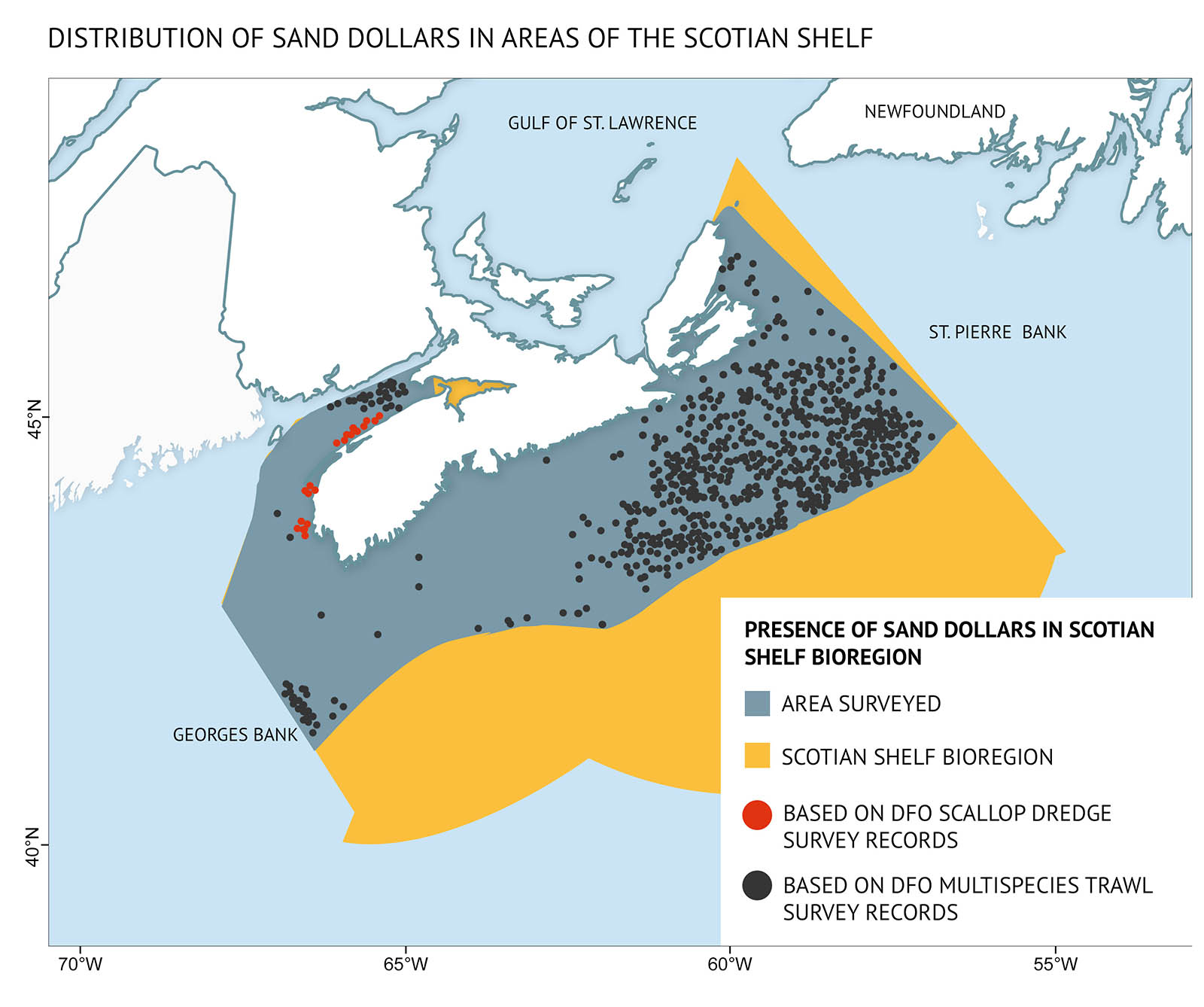 "Figure 17: Distribution of sand dollars in the Scotian Shelf bioregion from DFO multispecies trawl surveys (1999–2015) and scallop stock assessment surveys (1997, 2007). Sand dollars are particularly abundant in the Bay of Fundy, eastern Scotian Shelf, Georges Bank, Gulf of St. Lawrence, and the Grand Banks. (Reproduced with permission from Beazley et al. 2017). A map of the Scotian Shelf showing the distribution of sand dollars. Text above the map says ""Distribution of sand dollars in areas of the Scotian Shelf"". The area on the map goes from the Gulf of St. Lawrence and southern shore of Newfoundland at the top to Georges Bank at the bottom left with an outline of the Scotian Shelf bioregion. A legend in the bottom left-hand corner has text at the top saying ""Presence of sand dollars in Scotian Shelf bioregion"". Areas which have been surveyed are indicated by a blue shading, and the Scotian Shelf bioregion is shaded in orange. Red dots on the map indicate presence of sand dollars based on DFO scallop dredge survey records, and black dots indicate presence of sand dollars based on DFO multispecies trawl survey records. The Scotian Shelf bioregion extends to the right off the east coast of Nova Scotia. The area surveyed extends from the coast approximately half-way across the region. Black dots are spread across the shelf in the eastern portion of this surveyed area with a generally uniform distribution. Fewer black dots are located in the western portion of the area with a small cluster in the far bottom left corner. Another cluster occurs in the upper Bay of Fundy. A linear group of red dots is located along the eastern shore of the Bay of Fundy and part way around the western tip of Nova Scotia."