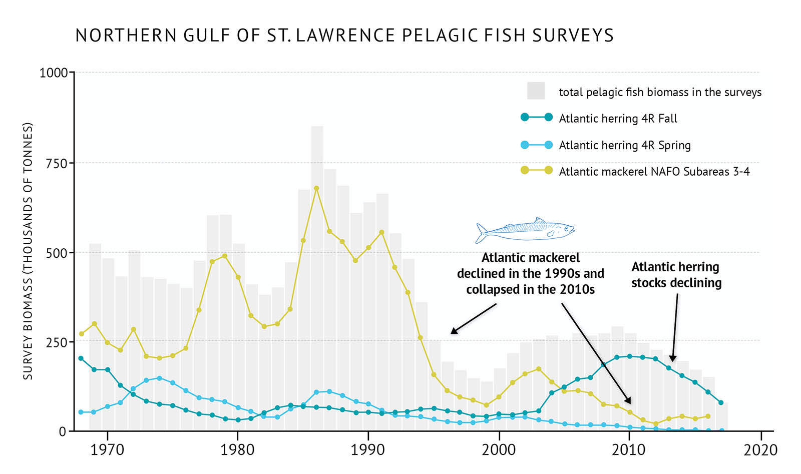 "Figure 23: Survey biomass for total pelagic fish and individual species in the northern Gulf of St. Lawrence. A bar and line graph illustrates the survey biomass for total pelagic fish as well as individual species in the northern Gulf of St. Lawrence. Text above the graph says ""Northern Gulf of St. Lawrence Pelagic Fish Surveys"".The vertical axis on the left shows the survey biomass in units of kilograms per tow from 0 to 1000 in increments of 250. The bottom horizontal axis shows the years between 1970 and 2020 in 10 year increments. The biomass for total pelagic fish in the survey is represented by grey vertical bars. The data extends from 1968 to 2017. The total survey biomass fluctuates between approximately 400 to 500 thousand tonnes in the 1970s and 1980s, with a peak in the early 1980s of near 600 thousand tonnes. It increases rapidly in the mid-1980s with a peak of approximately 850 thousand tonnes and then fluctuating between 600 to 700 thousand tonnes. It decreases through the 1990s to almost 100 thousand tonnes then increases in the early 2000s to approximately 250 thousand tonnes. It decreases again over the 2010s to near 100 thousand tonnes. The survey biomass of individual pelagic species is represented by coloured lines on the same graph. A legend appears on the right. A dark blue data line shows the survey biomass of Atlantic herring for fall in the 4R NAFO zone. A light blue data line shows the survey biomass of Atlantic herring for spring in the 4R NAFO zone. A yellow data line shows the survey biomass of Atlantic mackerel in NAFO Subareas 3 and 4. The survey biomass of Atlantic mackerel is higher than the other species on the graph and is similar to the overall trend for total survey biomass of pelagic fish. In the early 1970s it fluctuates around 250 thousand tonnes, increasing in the late 1970s to a peak near 500 thousand tonnes. It then increases again in the late-1980s peaking below 700 thousand tonnes. It decreases in the 1990s below 100 thousand tonnes. There is a modest increase in the early 2000s but then it decreases until the 2010s where it remains at a low level. The survey biomass of Atlantic herring in 4R for spring and fall surveys both remain below the Atlantic mackerel biomass until the mid-2000s. The 4R fall Atlantic herring biomass is near 250 thousand tonnes in the late 1960s, but decreases and remains low until the mid-2000s when it increases again to near 250 thousand tonnes. In the 2010s it begins to decrease again. The 4R spring Atlantic herring biomass has a slight increase in the mid-1970s, but is generally low throughout the time period of the graph and decreases in the 2000s and 2010s. A small, light blue outline drawing of an Atlantic mackerel is placed above the vertical bars to the right-hand side of the graph. Below the drawing there is text which states ""Atlantic mackerel declined in the 1990s and collapsed in the 2010s"". An arrow points down to the 1990s period and another to the 2010 period. Another line of text farther on the right-hand side of the graph says ""Atlantic herring stocks declining"". An arrow points from the text to the 2010s period."