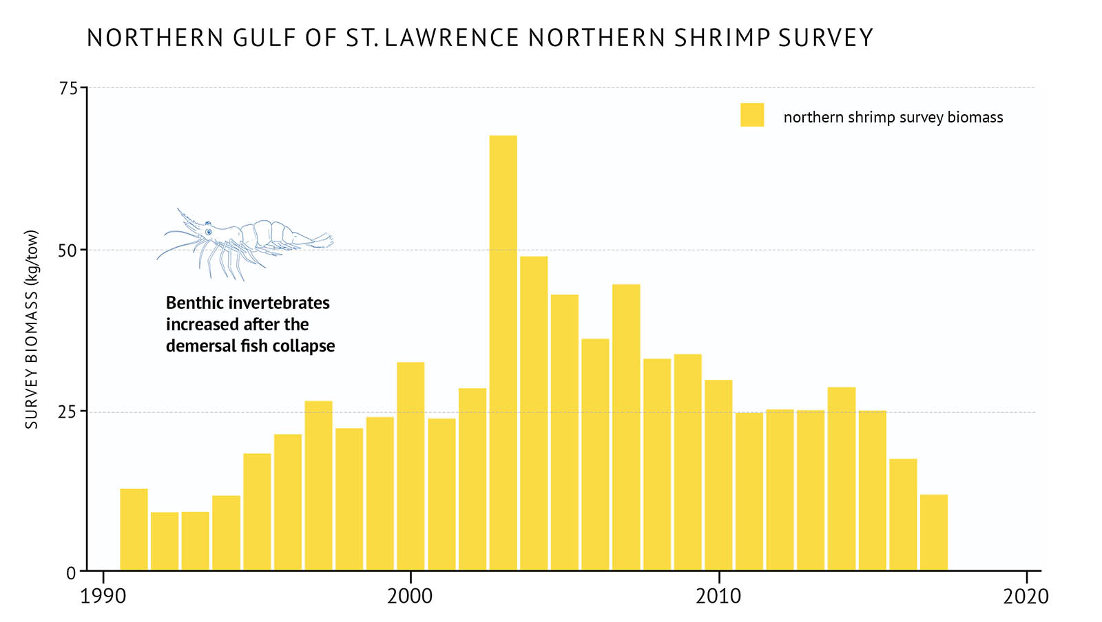 "Figure 26: Survey biomass for northern shrimp in the northern Gulf of St. Lawrence. A bar graph illustrates the survey biomass for northern shrimp in the northern Gulf of St. Lawrence. Text above the graph says ""Northern Gulf of St. Lawrence Northern Shrimp Survey"". The vertical axis on the left shows the survey biomass in units of kilograms per tow from 0 to 75 in increments of 25. The bottom horizontal axis shows the years between 1990 and 2020 in 10 year increments. The biomass of northern shrimp is represented by yellow vertical bars. A legend appears on the right. The biomass increases in the 1990s and peaks in 2003 between 50 and 75 kilograms per tow. After 2005 it declines until the last year of data in 2017. A small, light blue outline-drawing of a shrimp is placed on the graph above the vertical bars to the left hand-side. Below the drawing there is text which states ""Benthic invertebrates increased after the demersal fish collapse""."