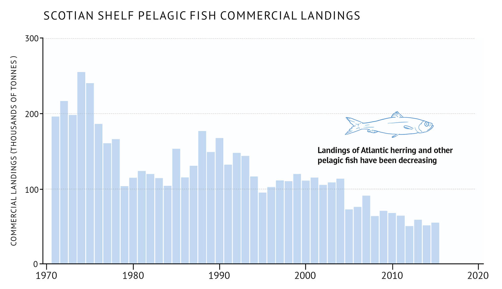 "Figure 29: Scotian Shelf commercial landings for pelagic fish. A bar graph illustrates the commercial landings for pelagic fish on the Scotian Shelf. Text above the graph says ""Scotian Shelf Pelagic Fish Commercial Landings"". The vertical axis on the left shows the commercial landings in units of thousands of tonnes from 0 to 300 in increments of 100. The bottom horizontal axis shows the years between 1970 and 2020 in 10 year increments. The commercial landings are represented by light blue vertical bars. The landings begin between 200 and 250 thousand tonnes in the early 1970s. There is a decline in the late 1980s to early 1990s and the decline continues to the last year of data in 2015. A small, light blue outline-drawing of an Atlantic herring is placed on the graph above the vertical bars to the right hand-side. Below the drawing there is text which states ""Landings of Atlantic herring and other pelagic fish have been decreasing""."