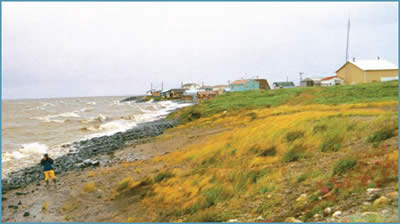 Arctic coastal community