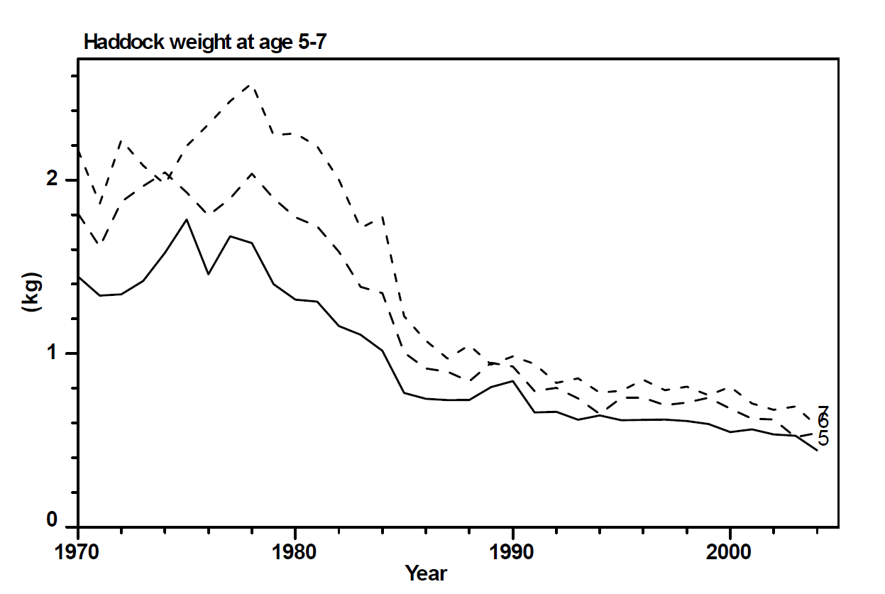 Figure 10 - Haddock length at age for ages 5-7