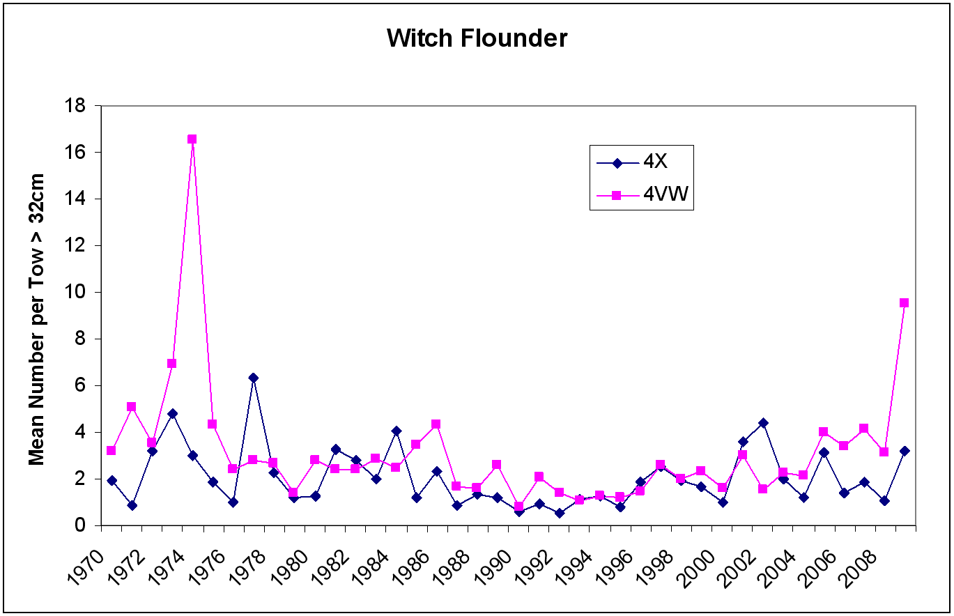 Figure 8 - Witch Flounder catch chart