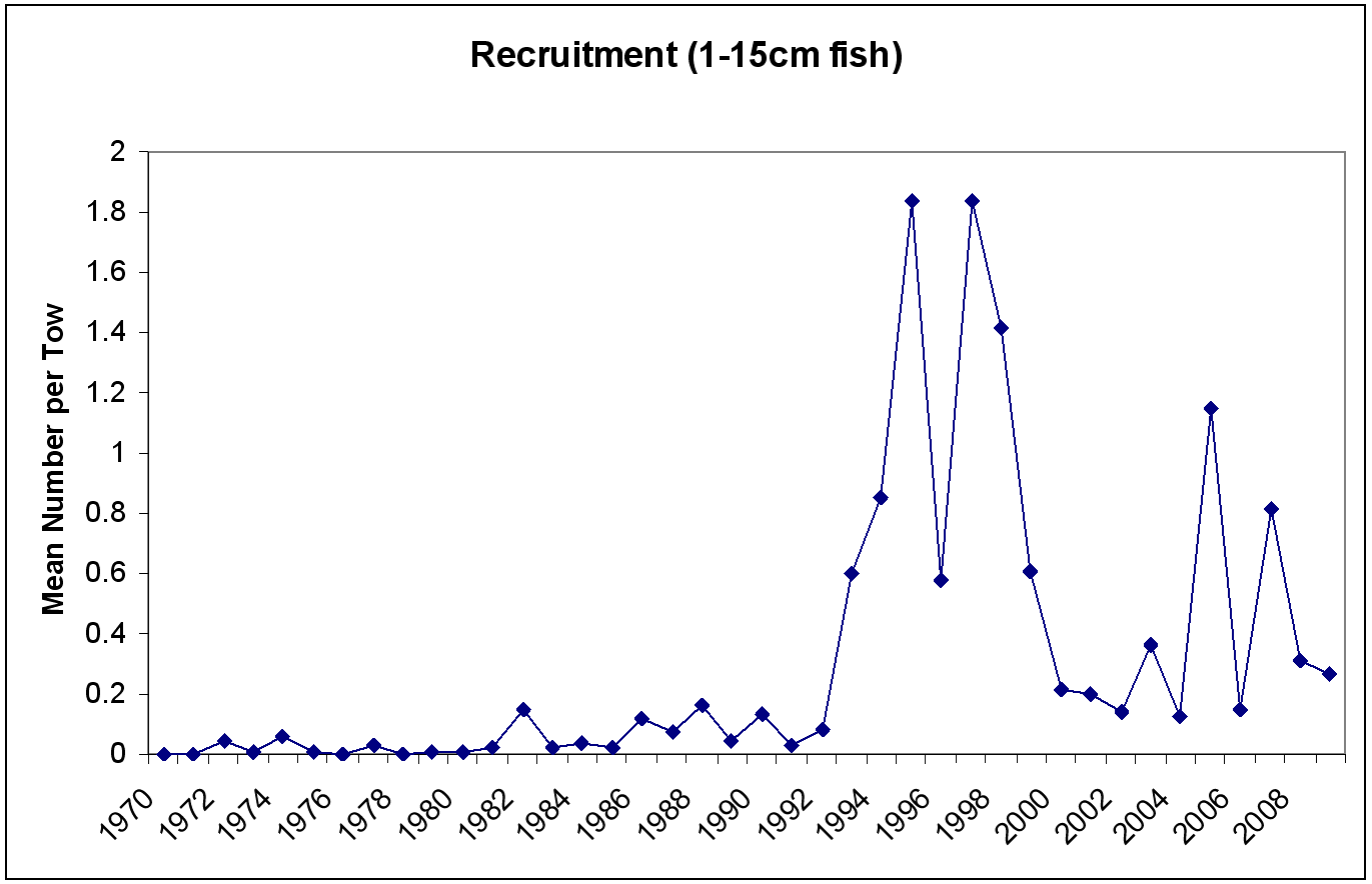 Figure 9 - Recruitment chart for Witch Flounder