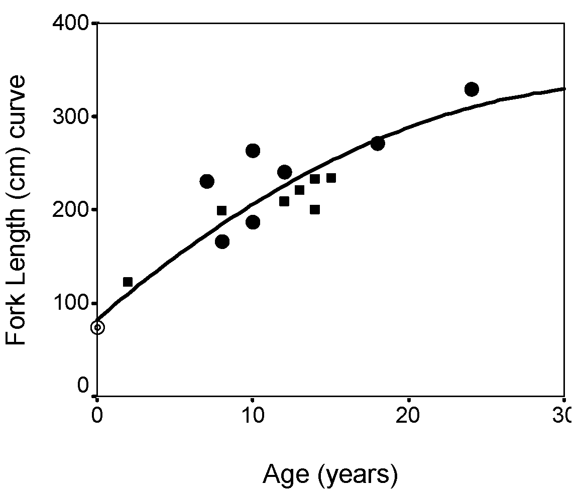 figure 3 : growth of makos in canadian waters