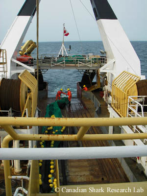 A trawl being hauled back aboard the Canadian Department of Fisheries and Oceans research vessel (RV) the MV Teleost